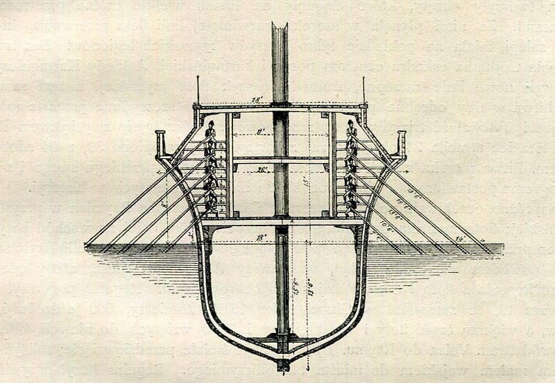 Roman panther cross-section