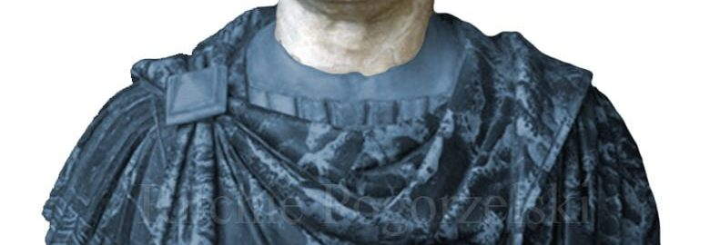 The bust of Vespasian with the reconstruction marked