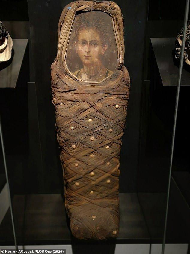 Mumia chłopca egipskiego z okolicy Fajum