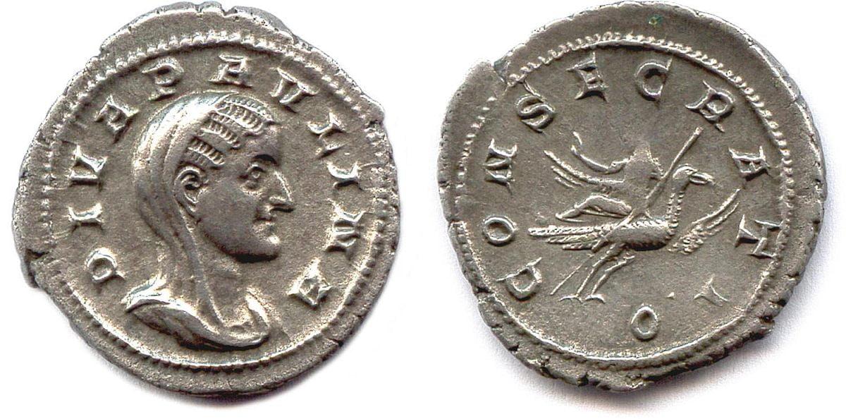 Moneta Cecylii Pauliny