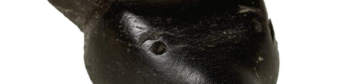 Interesujący amulet z głową zwierzęcia