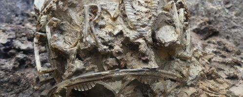 Odkryto rzadką rzymską wazę w środkowej Francji