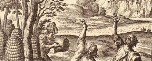 Illustration of catching a swarm from The Georgics of Virgil, an English translation of the poem by John Dryden from 1697