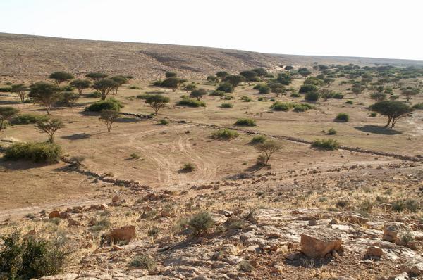 Pozostałości po centenarium w Suq al Awty w dzisiejszej Libii