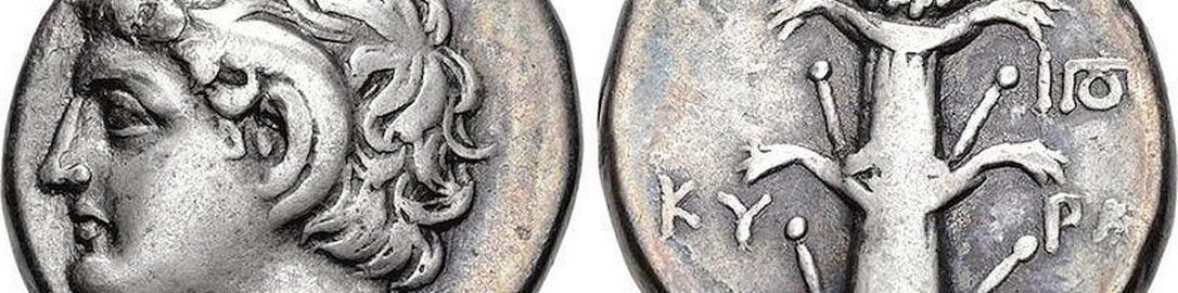 Wizerunek Silphium na rewersie monety z Cyrene