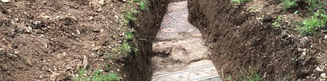 In 2020, an exceptionally well-preserved Roman mosaic was discovered under a vineyard near the city of Negrar (northern Italy)