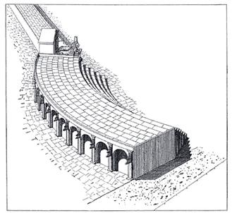 Reconstruction of the rostra