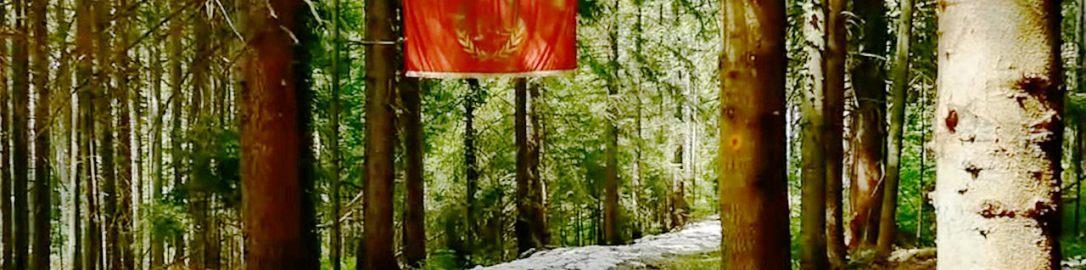 Roman road discovered in Bosnia