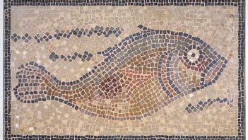 Ryba u stóp Oktawiana