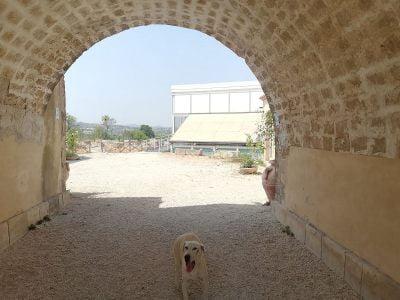 Villa Romana del Tellaro in Sicily at the entrance to the museum