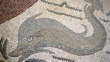 Delfin - przyjaciel rzymskiego chłopca
